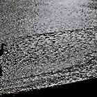 Sandpiper by Stephen Burke