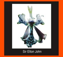Sir Elton John II - Orchid Alien Discovery Kids Clothes