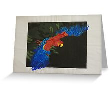 First Flight - Scarlet Macaw Greeting Card