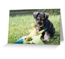 MS puppy second Greeting Card