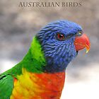 Australian Birds by Marilyn Harris