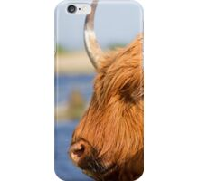 Highland Cattle in Oare Marshes, Kent iPhone Case/Skin