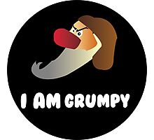I am Grumpy  Photographic Print