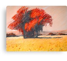 rote Insel Canvas Print