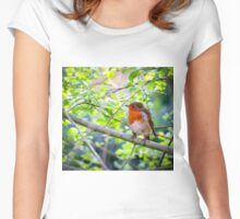 Robin on Branch Women's Fitted Scoop T-Shirt