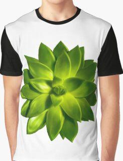 MINI GREEN SUCCULENT MANDALA Graphic T-Shirt