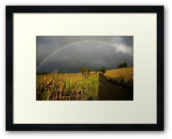 Somewhere Under the Rainbow by Randy Richards