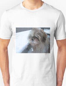 shih tzu cute Unisex T-Shirt