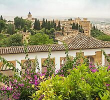 View from the Generalife - Granada - Spain by TonyCrehan