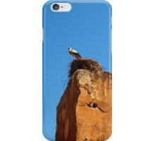 Stork Nesting, Marrakech iPhone Case/Skin