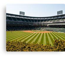 Sox Park Canvas Print