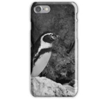 The King of the Mountain iPhone Case/Skin