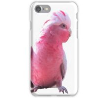 Australian Pink and Grey Parrot iPhone Case/Skin