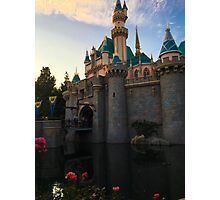 Serenity inside a castle Photographic Print
