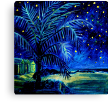 Starry Night - Monkey Mia Canvas Print