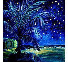 Starry Night - Monkey Mia Photographic Print