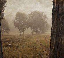 Winding Dirt Road through the Pinnacle by Wolf Sverak