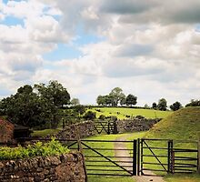 English Country Landscapes 5 by wallarooimages