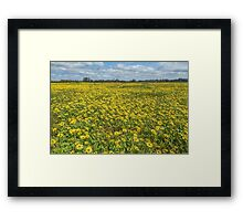 Spring in Yan Yean Country Victoria Framed Print