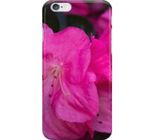 peony in spring iPhone Case/Skin