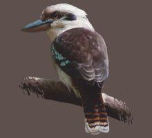 Kookaburra by Daniel Ranger