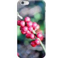 festive Christmas holly iPhone Case/Skin