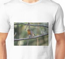 Robin at Tehidy Woods in Cornwall Unisex T-Shirt