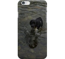 Crystal Clear Water Play - the Splashing Puppy iPhone Case/Skin