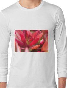 succulent plant Long Sleeve T-Shirt