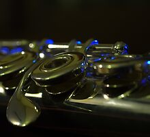 the silver flute by Clare Colins