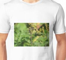 Golden Ringed Dragonfly at Gwithian Nature Reserve in Cornwall Unisex T-Shirt