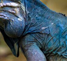 Blue Iguana Sticker