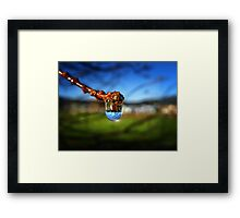 A Raindrop in a Suburb, a Suburb in a Raindrop Framed Print
