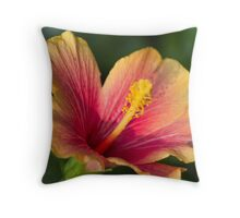colored ibiscus in spring Throw Pillow