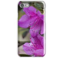 flowers in spring iPhone Case/Skin