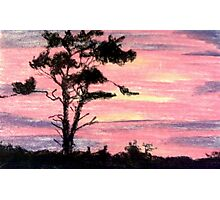 Sky Lit Pinks and Purples Photographic Print