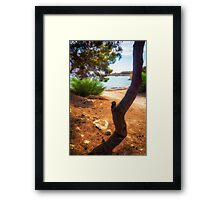 The tree and the cove  Framed Print