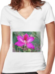 Bauhinia Purpurea Orchid Flower Women's Fitted V-Neck T-Shirt