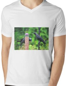 Young jackdaws on bird feeder Mens V-Neck T-Shirt