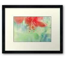 Softly Colored Framed Print