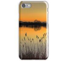Reservoir Sunset iPhone Case/Skin