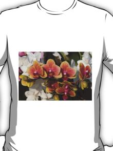 orchid in bloom T-Shirt