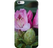 exotic flower iPhone Case/Skin