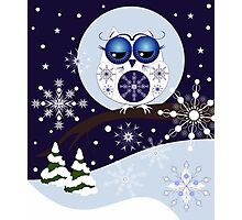 Cute Snow Owl in Snowflakes Land Photographic Print