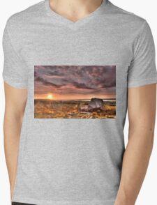 Arthur's stone Gower Swansea Mens V-Neck T-Shirt