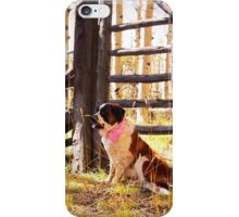 I support Breast Cancer Awareness iPhone Case/Skin