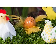 Easter hen Photographic Print