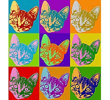 Cat Pop Art  Inspired Graphic Cats Kitty Bright Color Design Photographic Print