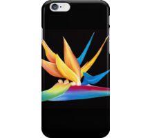 Bird of Paradise iPhone Case/Skin