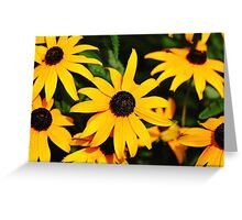 Golden Rays Of Sunshine Greeting Card